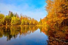 Jesień, żółci drzewa, woda Fotografia Stock