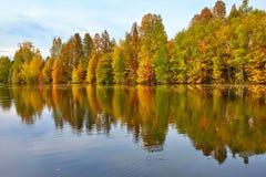 Jesień, żółci drzewa, woda Zdjęcie Royalty Free