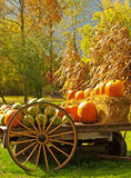 Jesień żniwa vertical Obraz Royalty Free