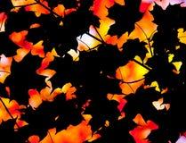 Jesień abstrakcjonistyczny skład Fotografia Royalty Free