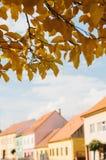 jesień błękitny miasta ulistnienia krajobrazu nieba drzewa yellow obrazy stock