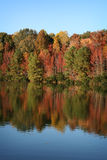jesień błękitny spadek jezioro odbijający drzewa Zdjęcie Stock