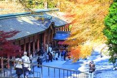 Jesień Barwi w Japonia, Piękni jesień liście Zdjęcia Royalty Free