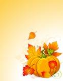 jesień biel odosobniony dyniowy Fotografia Stock