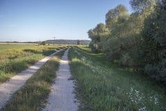 jesień brudnej śródpolnej drogi pojedynczy drzewo Zdjęcie Stock