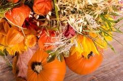 Jesień bukiet, banie, przylądka agrest na drewnianym Obraz Stock