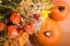 Jesień bukiet, banie, przylądka agrest na drewnianym Zdjęcia Royalty Free