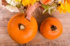 Jesień bukiet, banie, przylądka agrest na drewnianym Zdjęcia Stock
