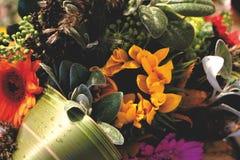 Jesień bukiet: Filtrujący zdjęcia stock