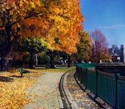 jesień Cambridge colours prowadnikowy ma pomnik Zdjęcie Stock