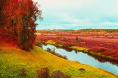 Jesień chmurny krajobraz Soroti rzeka i jesieni lasowi drzewa w Pushkinskiye Krwawym, Rosja - miękka część filtr stosować Fotografia Stock