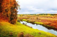 Jesień chmurny krajobraz Soroti rzeka i jesieni lasowi drzewa w Pushkinskiye Krwawym, Rosja - miękka część filtr stosować Fotografia Royalty Free