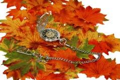 jesień czas nasz rok Zdjęcie Stock