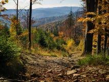 Jesień czas w górze obraz stock