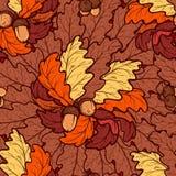 Jesień dębu acorns i liści bezszwowy wzór Zdjęcia Royalty Free