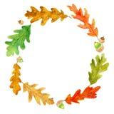 Jesień dębu acorns i liści wianek ilustracji