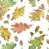 Jesień dębu wzór w zieleni royalty ilustracja