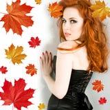 jesień dama fotografia royalty free