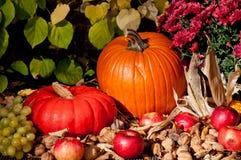Jesień dekoracja Fotografia Royalty Free