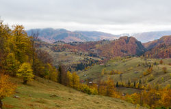 Jesieni panorama Obraz Royalty Free