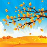jesień drzewo Fotografia Stock