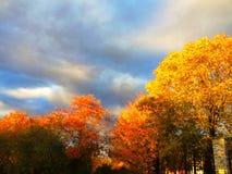 Jesień dzień Obraz Stock
