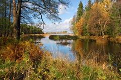 jesień dzień Zdjęcia Stock