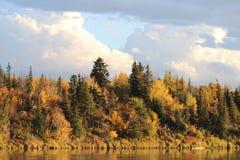 Jesień dzień W Alberta Obraz Royalty Free