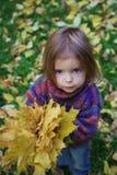 jesień dziewczyna opuszczać trochę Zdjęcia Royalty Free
