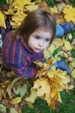 jesień dziewczyna opuszczać trochę Fotografia Royalty Free