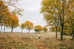 jesień dziewczyny trochę park pathway obrazy stock