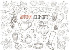 Jesień elementów ręka Rysująca ilustracja Fotografia Stock