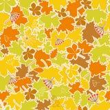 8 jesień eps kartoteka zawierać liść wzoru wektor Zdjęcia Royalty Free