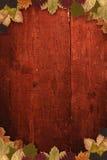 8 jesień eps kartoteka zawierać liść wzoru wektor Obraz Royalty Free