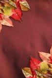 8 jesień eps kartoteka zawierać liść wzoru wektor Fotografia Royalty Free