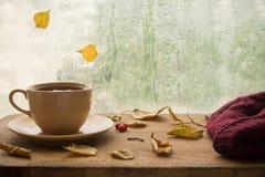 Jesień Filiżanka herbata Obrazy Stock