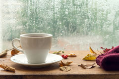 Jesień Filiżanka herbata Obrazy Royalty Free