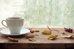 Jesień Filiżanka kawy obrazy royalty free