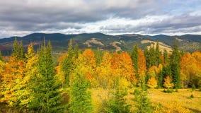 Jesień Góra krajobraz z postem Chmurnieje i Kolorowi drzewa zdjęcie wideo