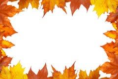 jesień granica Zdjęcia Stock