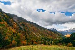 Jesień i zima kontrastujemy w zimnym dniu obraz royalty free