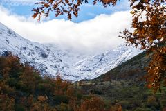 Jesień i zima kontrastujemy w zimnym dniu zdjęcie stock
