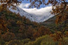 Jesień i zima kontrastujemy w zimnym dniu obrazy royalty free