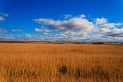 Jesień jasny dzień na polach Zdjęcia Royalty Free