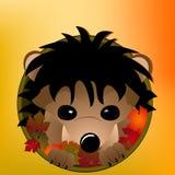 jesień jeż Fotografia Stock