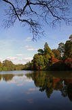 jesień jeziorny odbić drzew widok Zdjęcia Stock