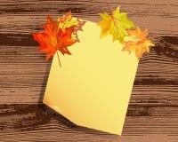 Jesień klon Zdjęcia Stock