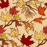 Jesień klonu gałąź i seads bezszwowy wzór Obraz Stock