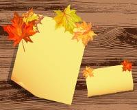 Jesień klonu tło Zdjęcie Royalty Free