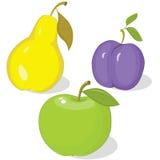 jesień kolekci owoc dojrzała Zdjęcie Stock